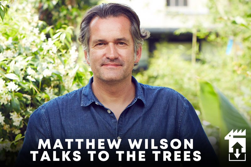 Matthew Wilson Talks To The Trees