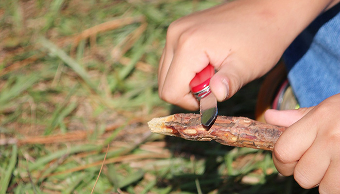 Rugged Outdoors: Whittling
